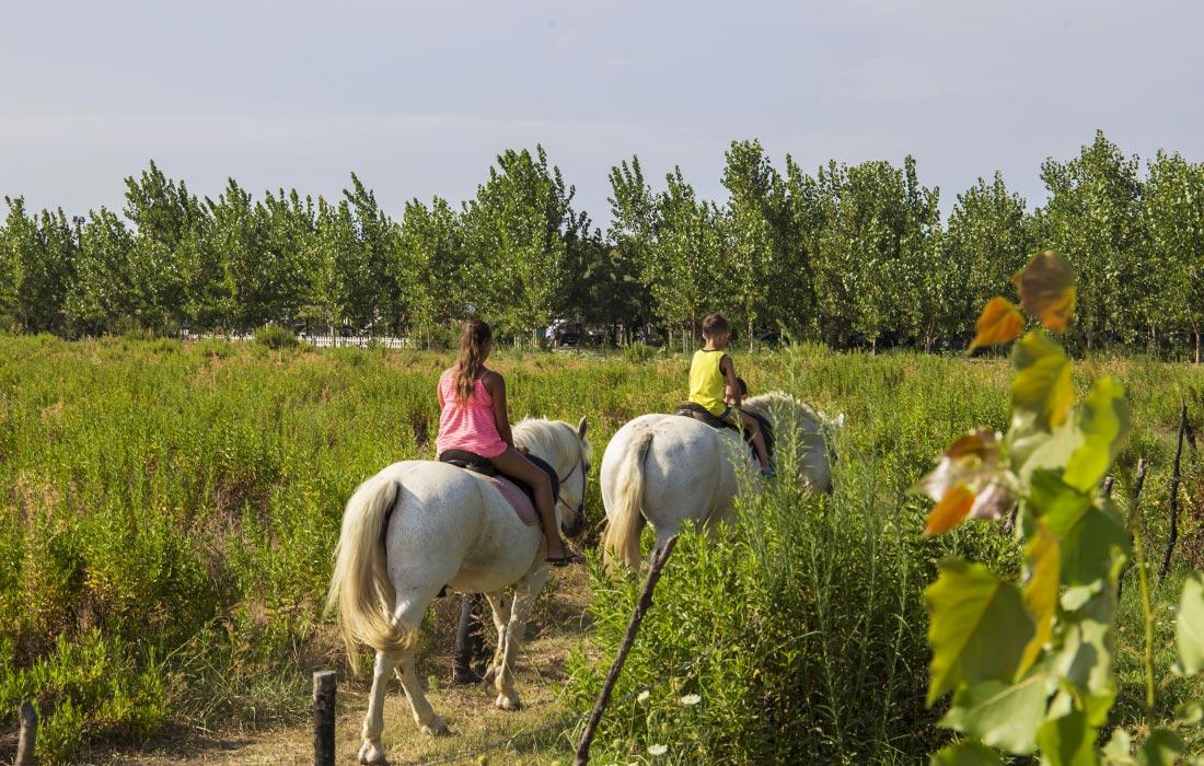 Villaggio turistico Calabria - Equitazione